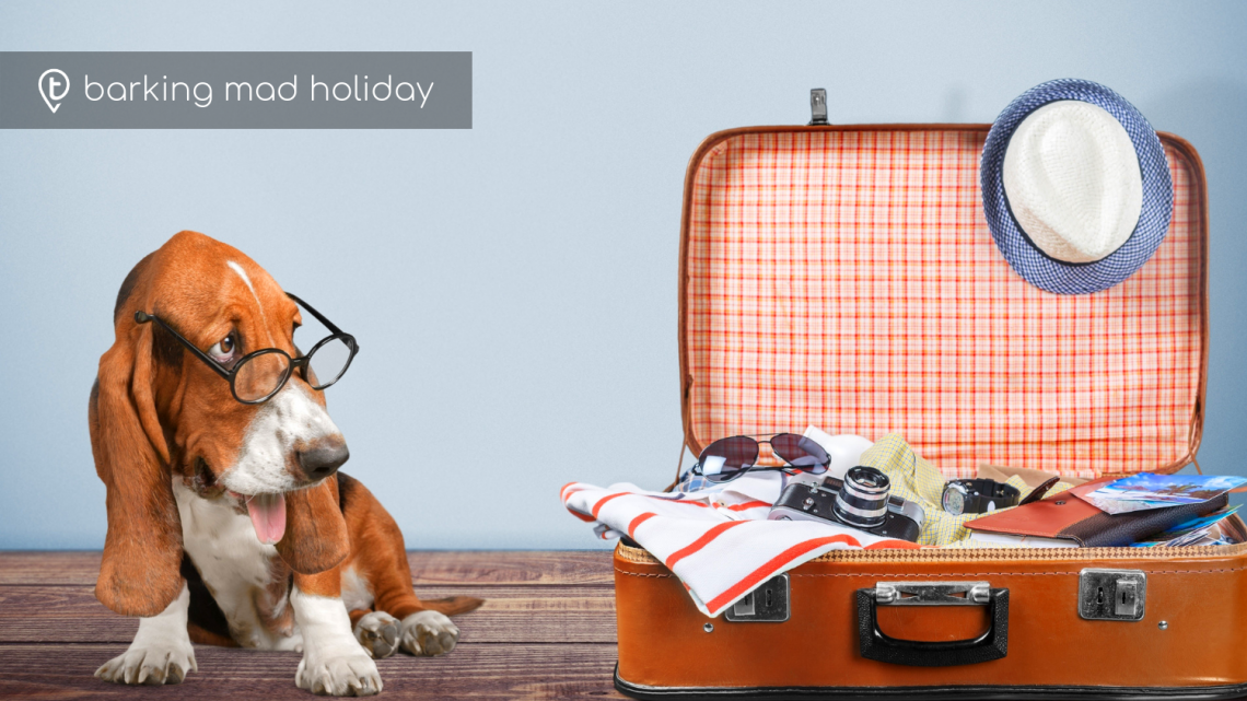 Pet Friendly Holidays – Am I Barking Mad?